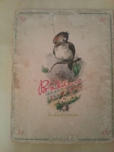 Buch Balduin Spatzenroman