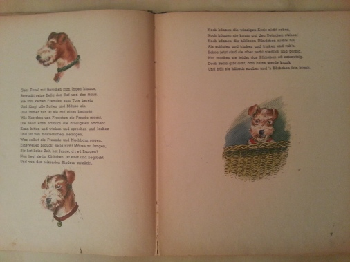 Buch Kinderbuch Bellas Kinder