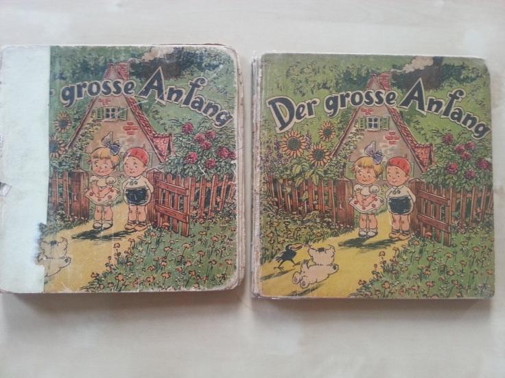 Putzi Buch Der grosse Anfang