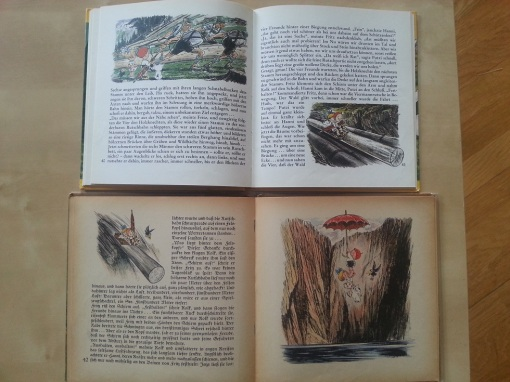Putzi Buch Alpenreise zu Viert